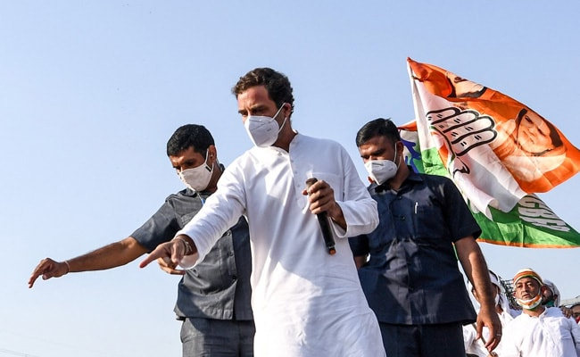 Opinion: Rahul Gandhi, Win Elections In Real Life, Not On Twitter