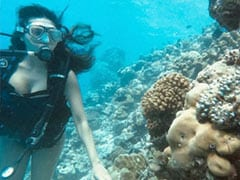 Just A Glimpse Of Esha Gupta's Underwater Adventures. See Pic