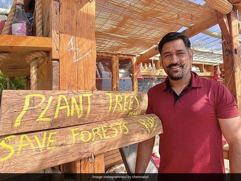 """""""Planting The Right Thoughts!"""": MS Dhoni Asks Fans To Plant Trees, Save Forests"""