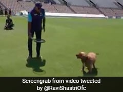 Watch: Ravi Shastri Plays Fetch With Furry Friend Winston After Team India's Practice Session