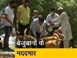 Videos : ग्रेटर नोएडा की ये टीम बनी जानवरों की मददगार