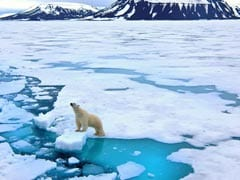 17 Young Leaders On Board, UN In India Launches Climate Change Campaign