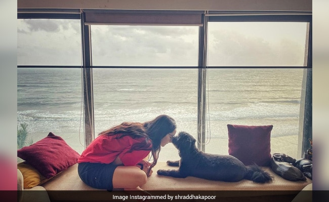 The View From Shraddha Kapoor's Seaside Apartment Is Simply Breathtaking. See Pic