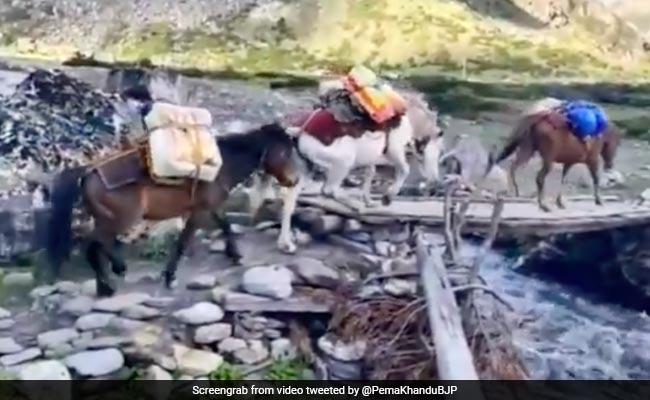 On Foot, Mule, Vehicle: Arunachal's Vaccine Drive 13,000 Feet Near Tibet Border