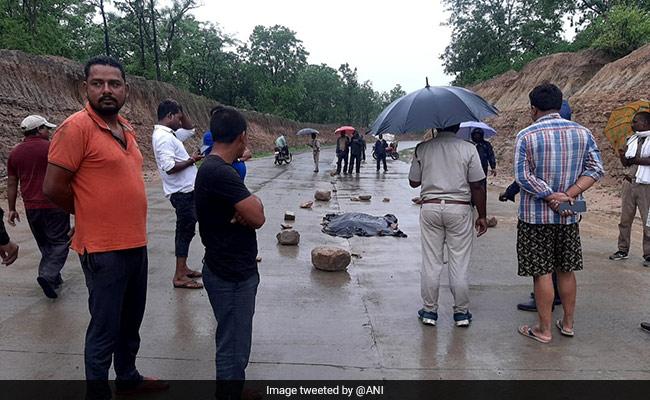 Tiger Run Over By Vehicle, Dies On National Highway In Madhya Pradesh