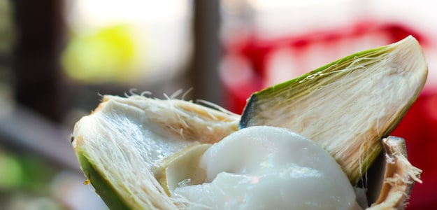 Did You Know? Coconut Meat Or 'Nariyal Ki Malai' Is Great For Your Health; Here Are Some Facts