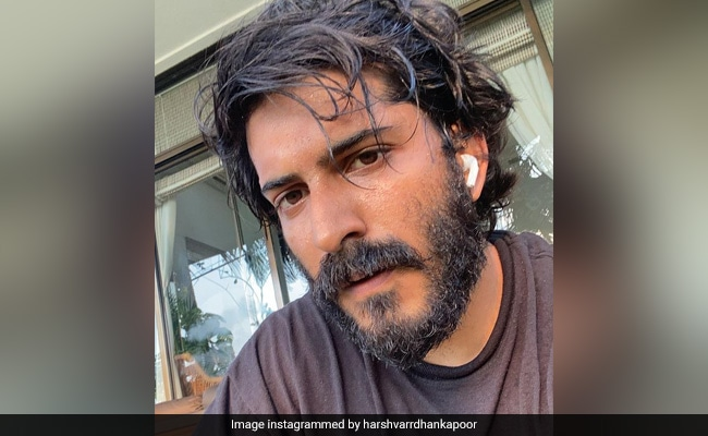 Amid Pandemic, Harshvardhan Kapoor Writes About 'Slowly Morphing Into An Anxious Creature'