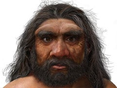 """""""Dragon Man"""": Scientists Say New Human Species Is Our Closest Ancestor"""