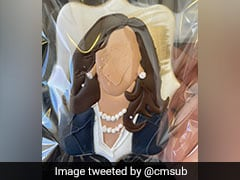 Much Ado About Kamala Harris Handing Out Cookies Styled After Her
