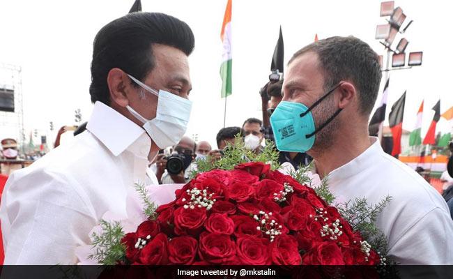 MK Stalin Greets 'Beloved Brother' Rahul Gandhi On His Birthday