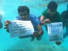 Kerala High Court Stays Lakshadweep Administration's Meat Ban In Schools