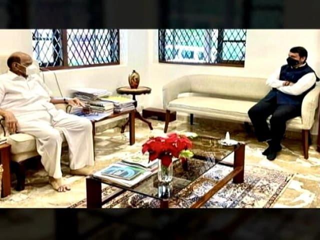 Video : Devendra Fadnavis Shuts Down Rumours After Surprise Sharad Pawar Meeting
