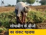Video : रवीश कुमार का प्राइम टाइम: मध्य प्रदेश के सोयाबीन किसान परेशान