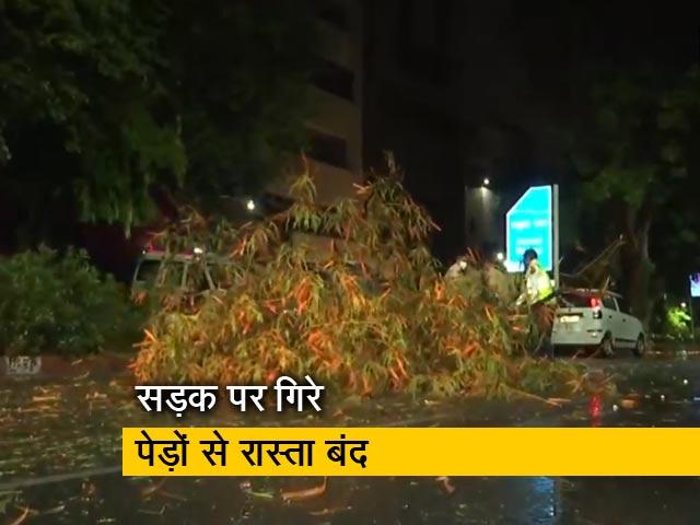 Video : दिल्ली में मूसलाधार बारिश के बाद गिरे पेड, वाहनों की आवाजाही बाधित
