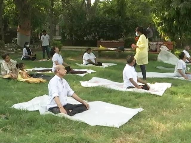 Video : People Of All Age Groups In Delhi Turn Out For Yoga Day