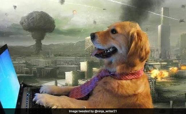 Global Internet Outage Triggers Meme Fest As #InternetShutdown Trends