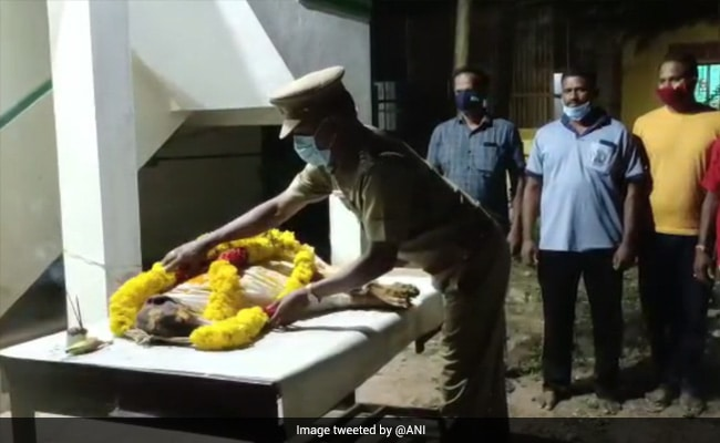 Tamil Nadu Police Sniffer Dog Laid To Rest With Full State Honours