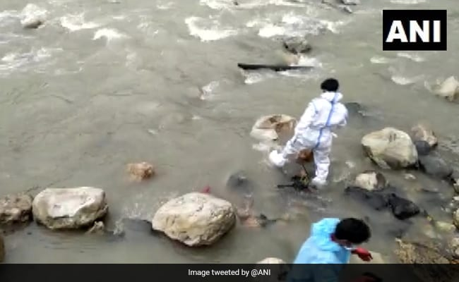 'Death Of Humanity', Say Locals As Dogs Feed On Bodies At Uttarakhand Riverbank