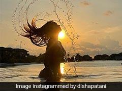 Disha Patani In A Bikini Is Better Than Even A Beautiful Sunset