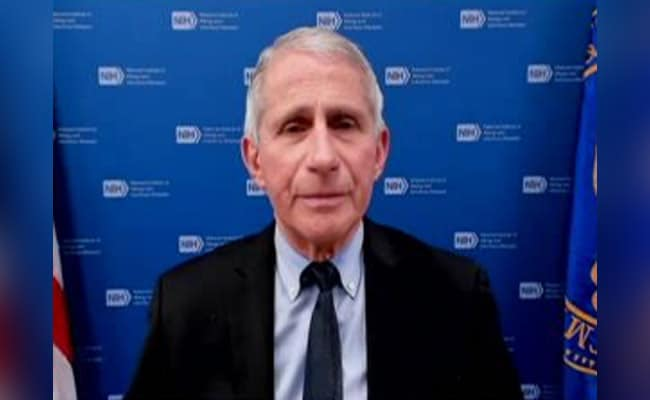 Highlights: Vaccines Key To Fight Covid-19, US' Anthony Fauci To NDTV