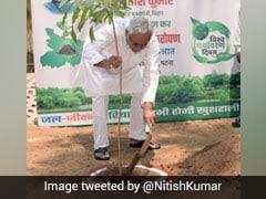 Nitish Kumar On World Environment Day: Bihar To Plant 5 Crore Saplings