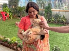 """<I>Pyar... Pyar... Pyara</i>"": Neena Gupta Fell In Love With This Fur-Ball At Work"