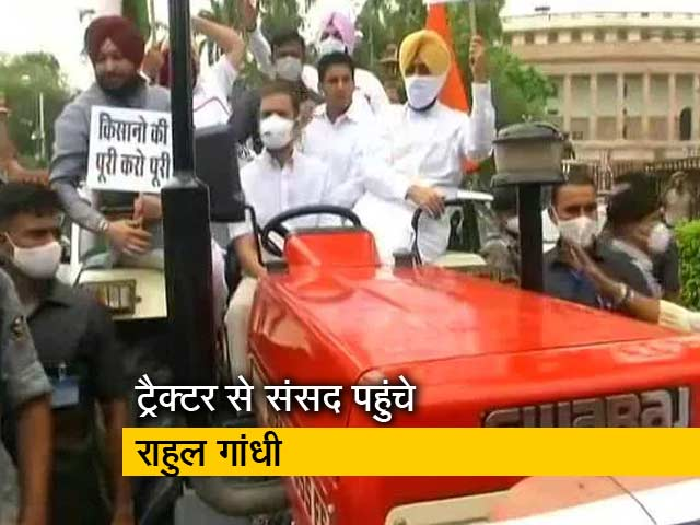 Videos : किसानों के समर्थन में कांग्रेस नेता राहुल गांधी ट्रैक्टर से संसद पहुंचे