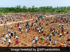 1 Million Saplings Planted In An Hour In Telangana In New World Record