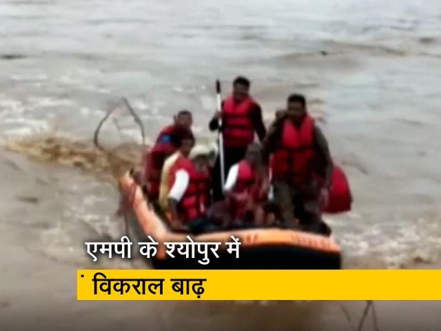 Videos : मध्य प्रदेश के बाढ़ग्रस्त इलाकों में सैकड़ों जिंदगियां बचाने का काम कर रही एसडीआरएफ टीम