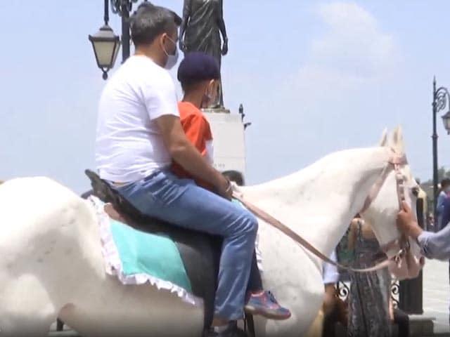 Video : Shimla Horsemen Welcome Tourist Rush