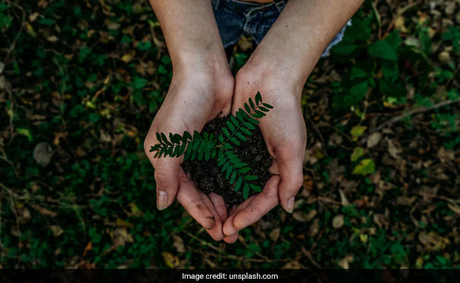 World Nature Conservation Day 2021: This Year's Theme, Purpose And Significance
