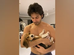 What's Keeping Varun Dhawan Busy? Play Dates With Adorable Fur-Ball Joey