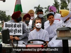 Day After Rahul Gandhi's Tractor Ride, Case Against Congress Leaders