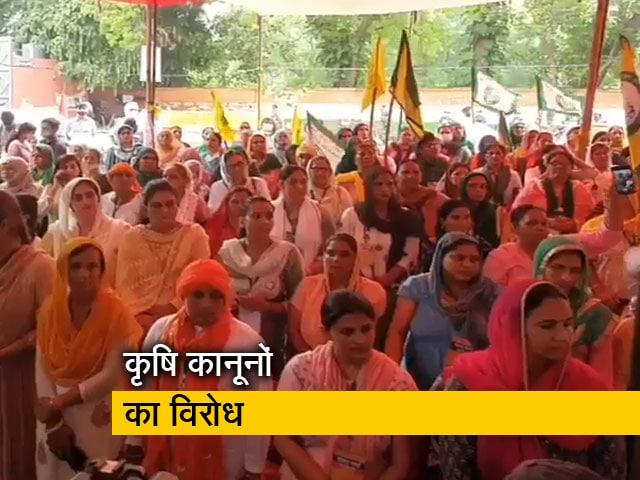 Videos : दिल्ली में जंतर मंतर पर महिलाओं ने चलाई किसान संसद