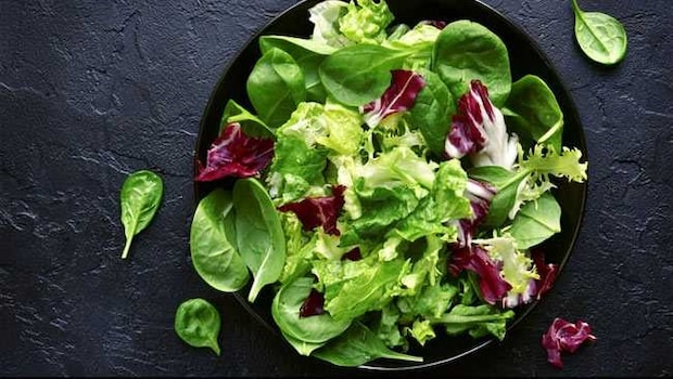 Salad Lovers, Take Note: Try These 7 Healthy Salad Recipes For Every Season
