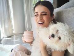 "How Radhika Madan Keeps Up With Her ""Fur Ball's Energy"""