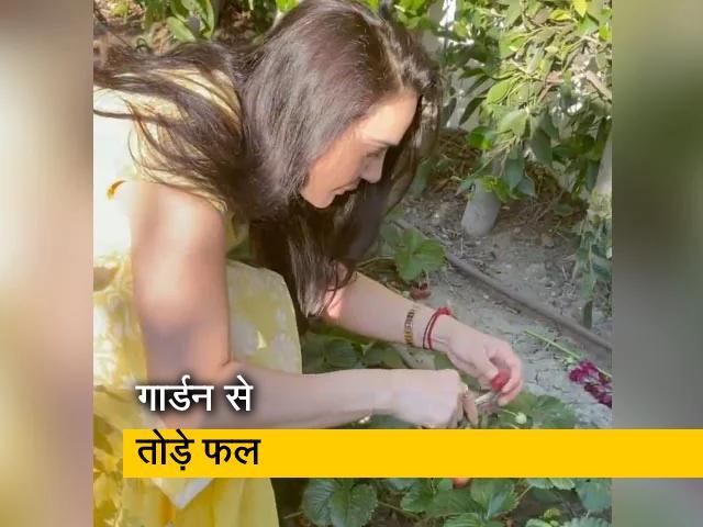 """Video : प्रीति जिंटा की """"घर की खेती"""" की एक झलक"""