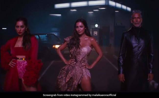 Supermodel Of The Year 2 Promo: Malaika Arora, Milind Soman And Anusha Dandekar Are Back. Need We Say More?
