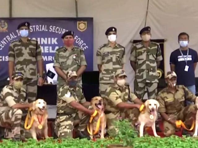 Video : Farewell For Delhi Metro's 7 Sniffer Dogs After 10 Years