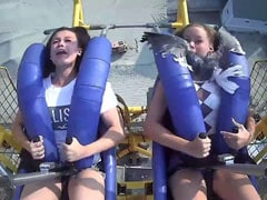 Watch: Teen On Roller Coaster Ride Hit By Seagull