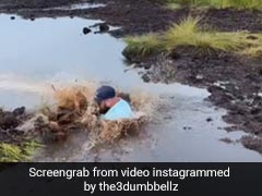 Viral Video: Husband Plunges Down Muddy Water As Wife Laughs Hysterically