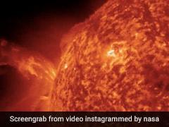 NASA ने शेयर किया सूर्य का अद्भुत नज़ारा, 3 करोड़ बार देखा गया Video, लोगों ने पूछा- क्या ये असली है ?