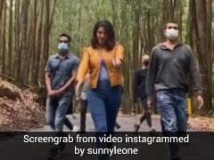 हाथों में गन लेकर घने जंगलों में यूं नजर आईं सनी लियोन, Video में देखें एक्ट्रेस का अंदाज