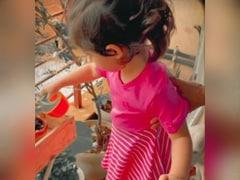 Cuteness Alert: Just Inaaya Naumi Kemmu Watering Her Plants
