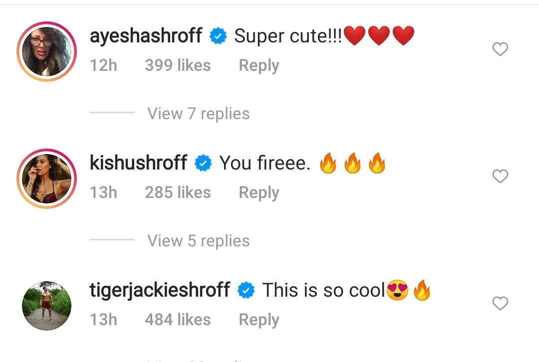 """, """"You Fire"""": Tiger Shroff And His Family's Reactions To Disha Patani's Dance Cover,"""