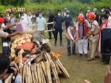 Video : Assam Chief Minister Attends Programme On 'Seized Drugs Disposal'