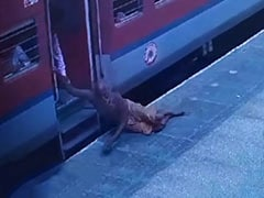 On Camera, Cops Save Man From Falling Under Train At Ghaziabad Station