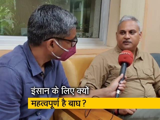 Videos : भारत में 14 टाइगर रिजर्व को मिला CA/TS मानक