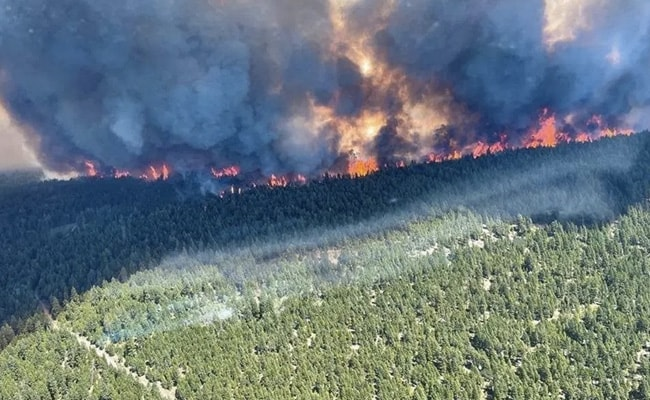 Fires Char Canada Town Amid Record-Breaking Temperatures, 1,000 Evacuated