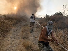 """Cyprus Says Huge Forest Fire """"Under Full Control"""""""